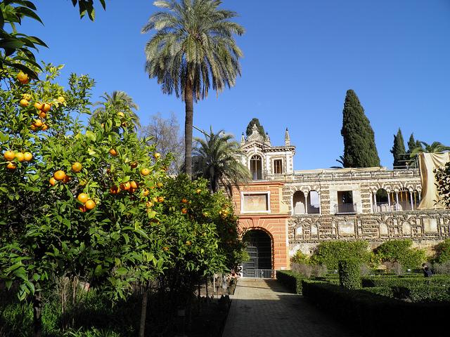 Sevilla wonen en huis kopen casadelmar - Orange en sevilla ...